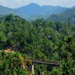 Na Sri Lankę bez wizy